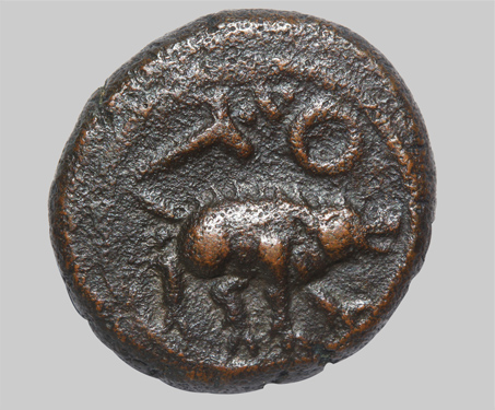 Tirumalaraya, Aravidu Dynasty, Copper Jital - Aravidu Dynasty, Boar, Imagining Mysore, Karnataka, Vijayanagara Empire