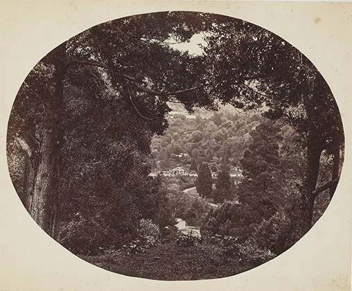 Through The Patient Lens: 19th-Century Images of India - Reads