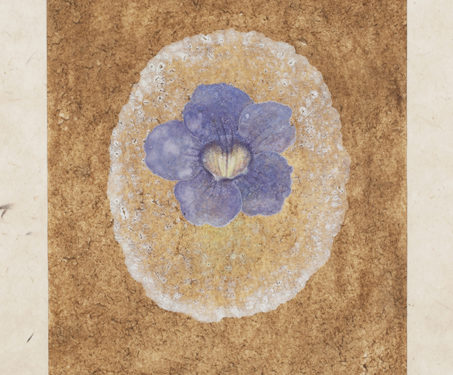 Where the Wildflowers Bloom: The Art Of Hima Hariharan - Flowers, Flowers for Spring, Hima Hariharan, Poetry & Nature, Watercolour