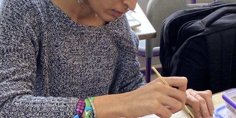Teacher Training - Saturday Art Class - Gond and Painted Photographs - Sarmaya @School