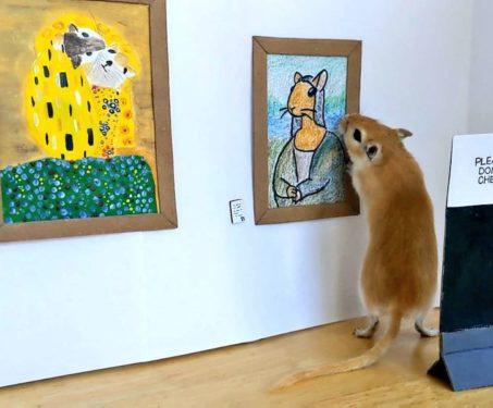 Gallery for Gerbils - Modern Art